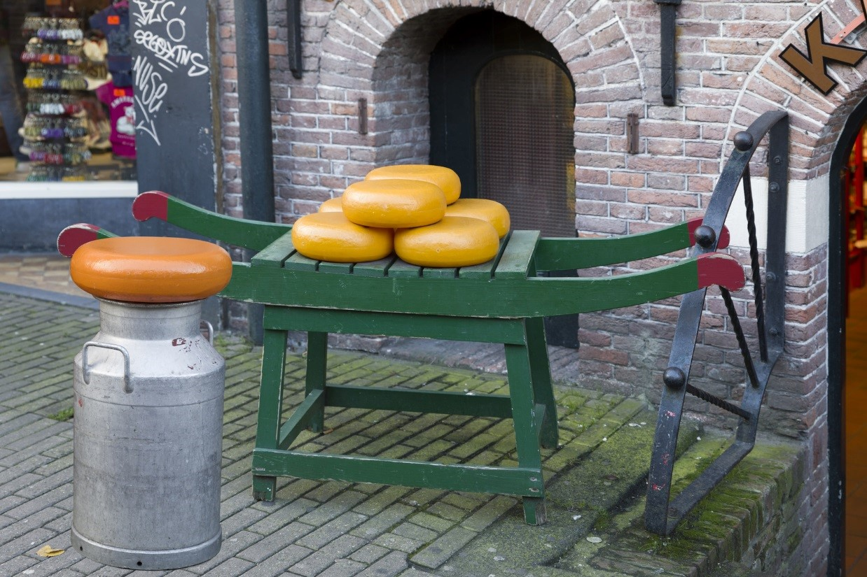 Cheese tasting as the ultimate Amsterdam Experience